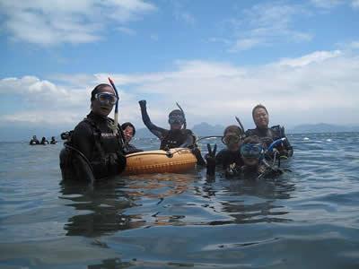 伊豆の海のダイビング風景